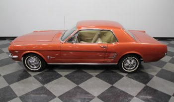 Ford Mustang 289 CUI 1966 Rot full