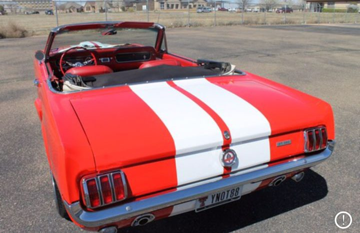 Ford Mustang Cabrio GT 350 clone BJ 1965 Rot/Weiss voll