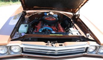 Plymouth Road Runner Coupe 383 BJ 1969 braun voll