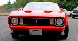 Ford Mustang 1973 Fastback 351 Mach 1
