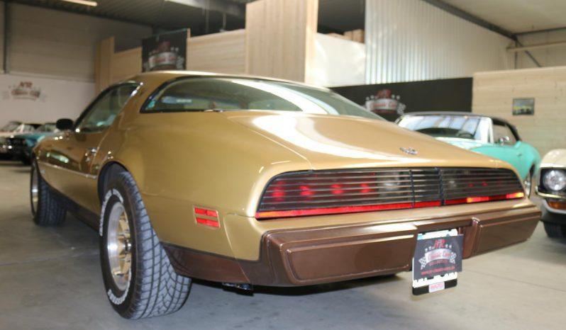 Pontiac Firebird Baujahr 1979 Gold full