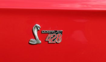 Ford Mustang 1968 Shelby Cobra GT 500 KR voll