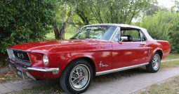 Ford Mustang 1967 Convertible Rot Consignment