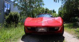 Chevrolet Corvette 1979 Rot