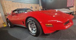 Chevrolet Corvette C3 BJ 1981 Rot/Rot