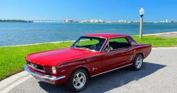 1966 Ford Mustang Rot